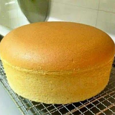 sponge vanilla powder 500 gram